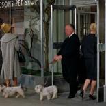 0:02 Saliendo de la tienda de mascotas con dos perros mientras Tippi Hedren entra.
